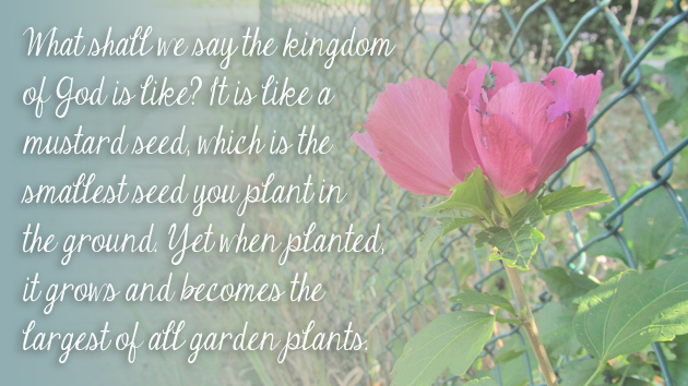 You Are a Seed